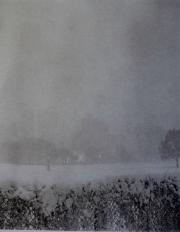 Sheep Meadow Winter, NYC